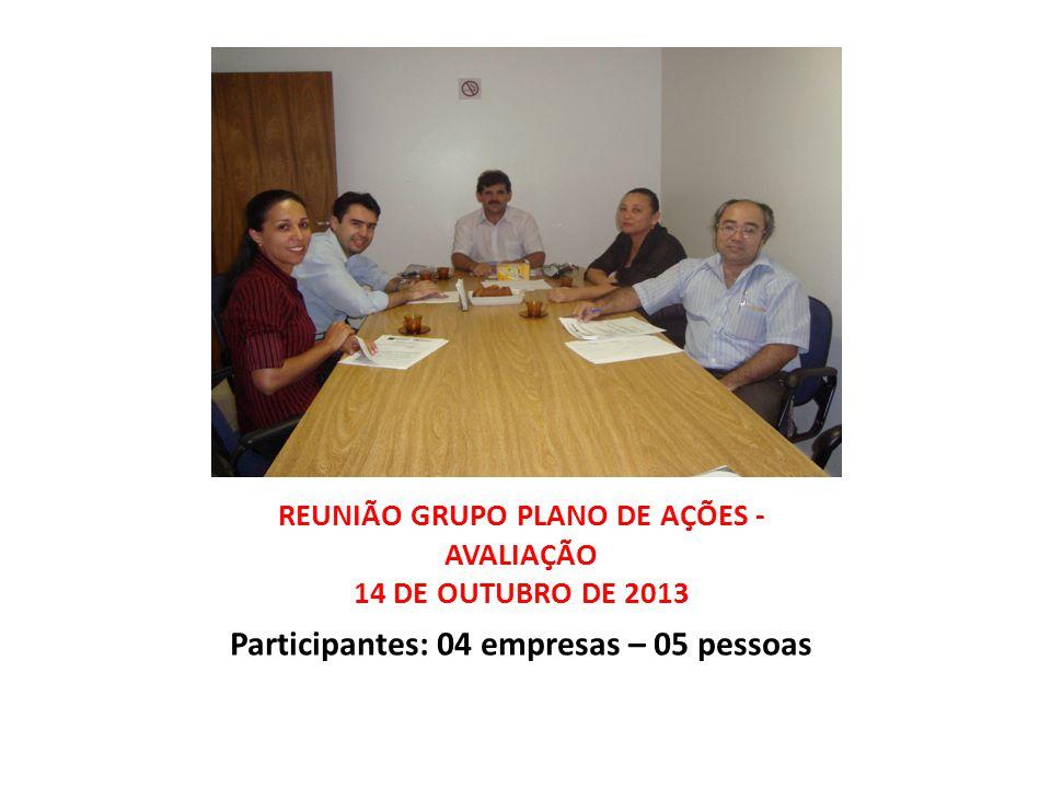 REUNIÃO GRUPO PLANO DE AÇÕES - AVALIAÇÃO 14 DE OUTUBRO DE 2013 Participantes: 04 empresas – 05 pessoas