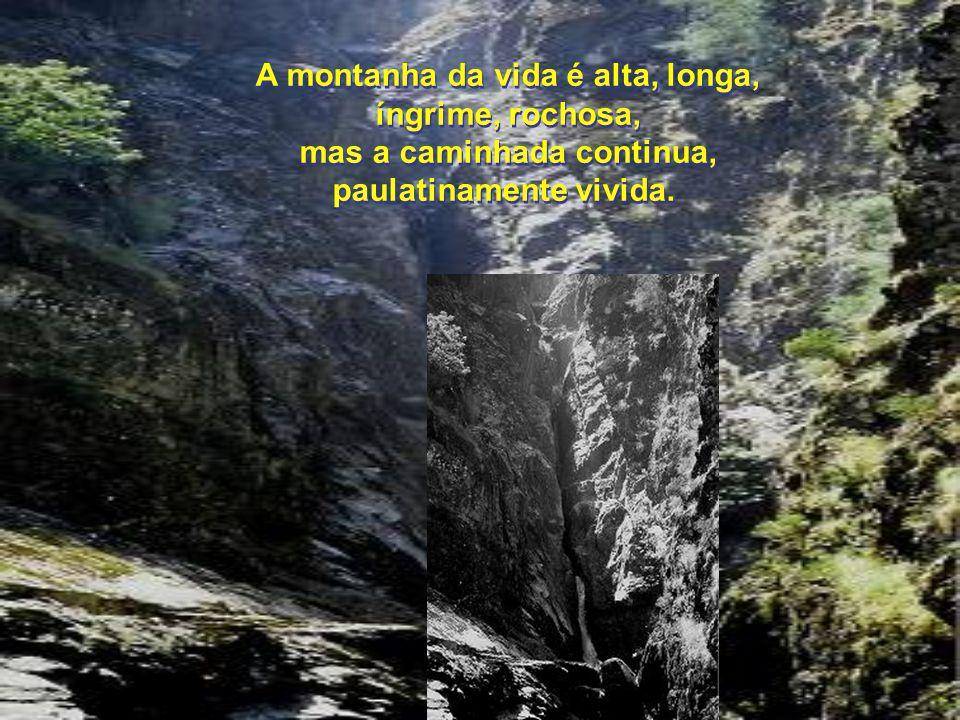 A montanha da vida é alta, longa, íngrime, rochosa, mas a caminhada continua, paulatinamente vivida.