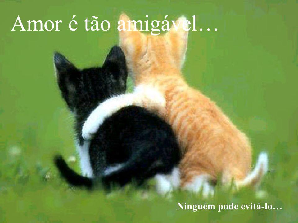 Amor carnal…