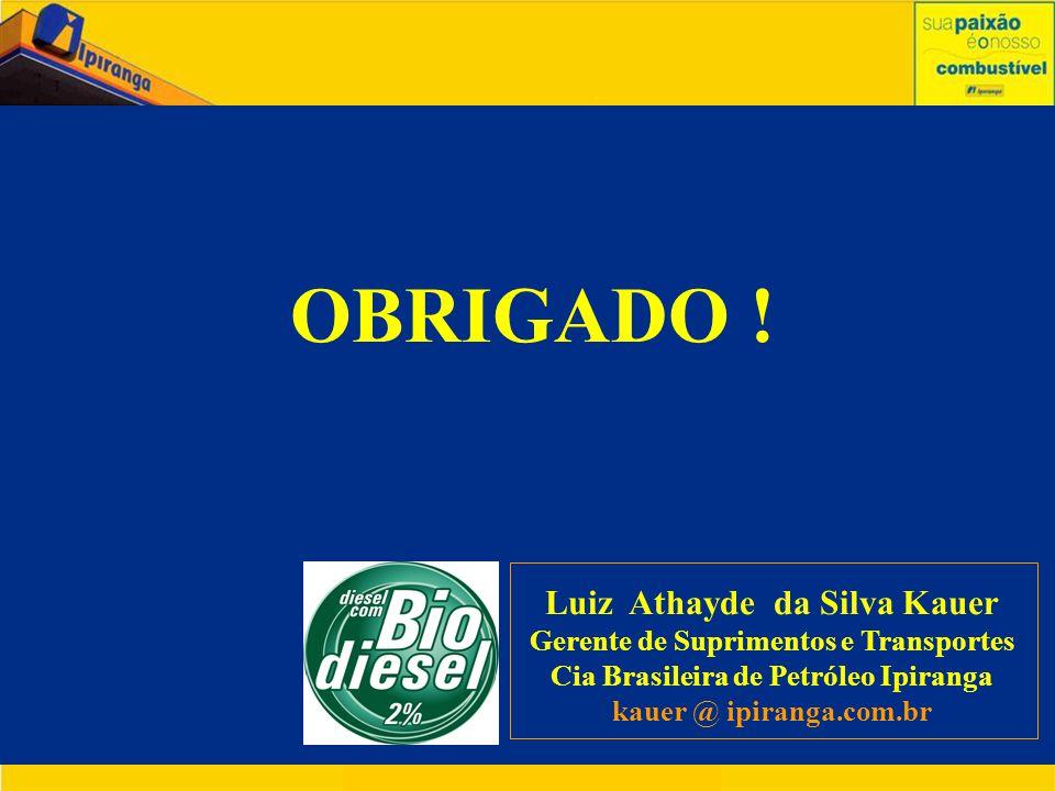 OBRIGADO ! Luiz Athayde da Silva Kauer Gerente de Suprimentos e Transportes Cia Brasileira de Petróleo Ipiranga kauer @ ipiranga.com.br