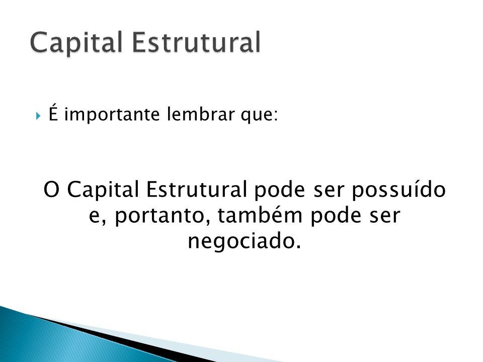  É importante lembrar que: O Capital Estrutural pode ser possuído e, portanto, também pode ser negociado.