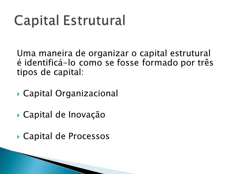 Uma maneira de organizar o capital estrutural é identificá-lo como se fosse formado por três tipos de capital:  Capital Organizacional  Capital de I