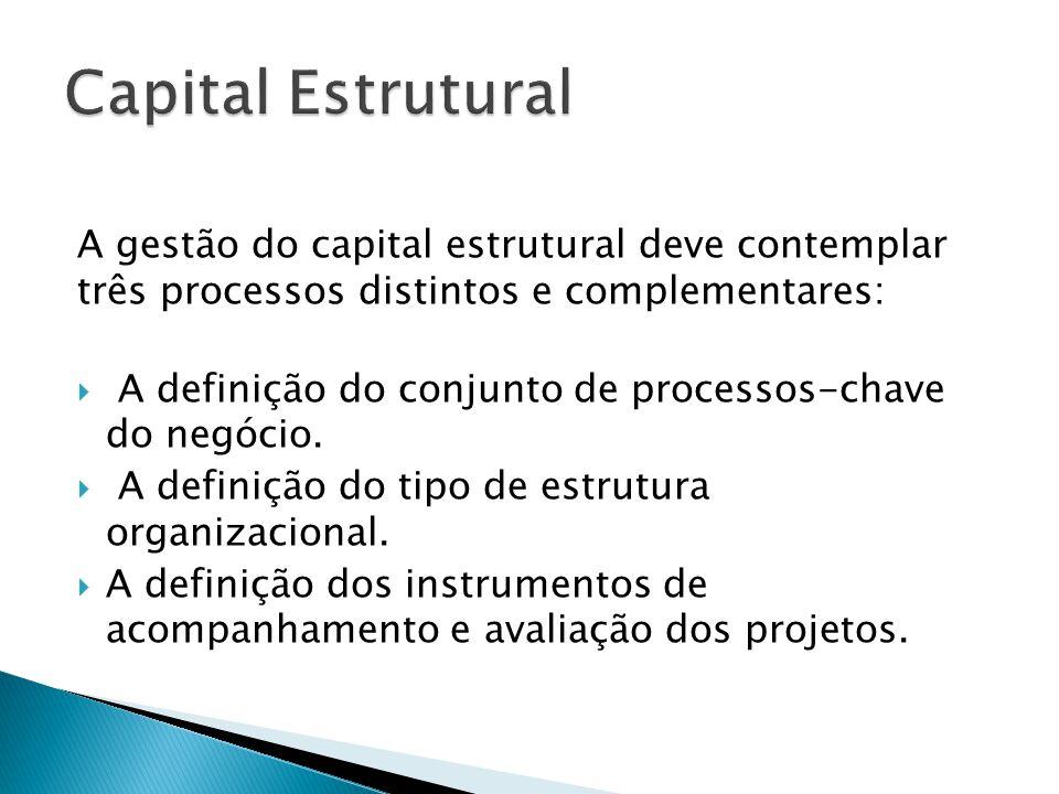 A gestão do capital estrutural deve contemplar três processos distintos e complementares:  A definição do conjunto de processos-chave do negócio.  A
