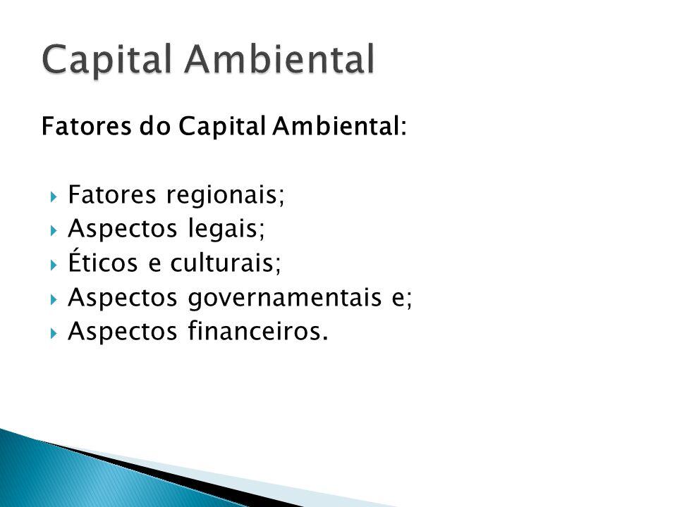 Fatores do Capital Ambiental:  Fatores regionais;  Aspectos legais;  Éticos e culturais;  Aspectos governamentais e;  Aspectos financeiros.