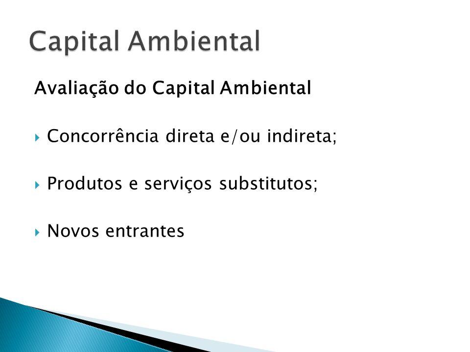 Avaliação do Capital Ambiental  Concorrência direta e/ou indireta;  Produtos e serviços substitutos;  Novos entrantes