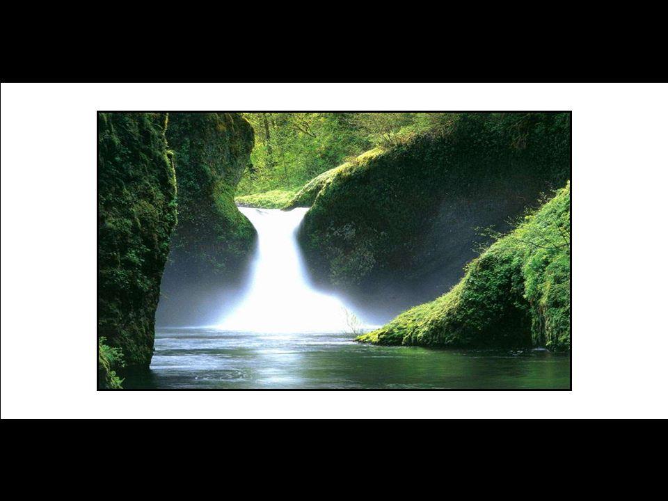 Agradeço, meu Deus, por minha visão perfeita! Viajemos agora por essas maravilhas da natureza... Embarquemos neste sonho...