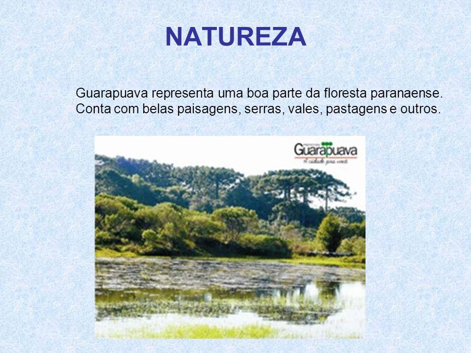 NATUREZA Guarapuava representa uma boa parte da floresta paranaense. Conta com belas paisagens, serras, vales, pastagens e outros.