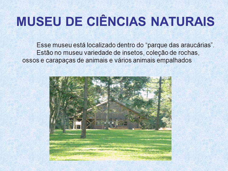 """MUSEU DE CIÊNCIAS NATURAIS Esse museu está localizado dentro do """"parque das araucárias"""". Estão no museu variedade de insetos, coleção de rochas, ossos"""
