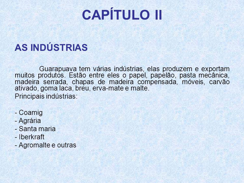 CAPÍTULO II AS INDÚSTRIAS Guarapuava tem várias indústrias, elas produzem e exportam muitos produtos. Estão entre eles o papel, papelão, pasta mecânic