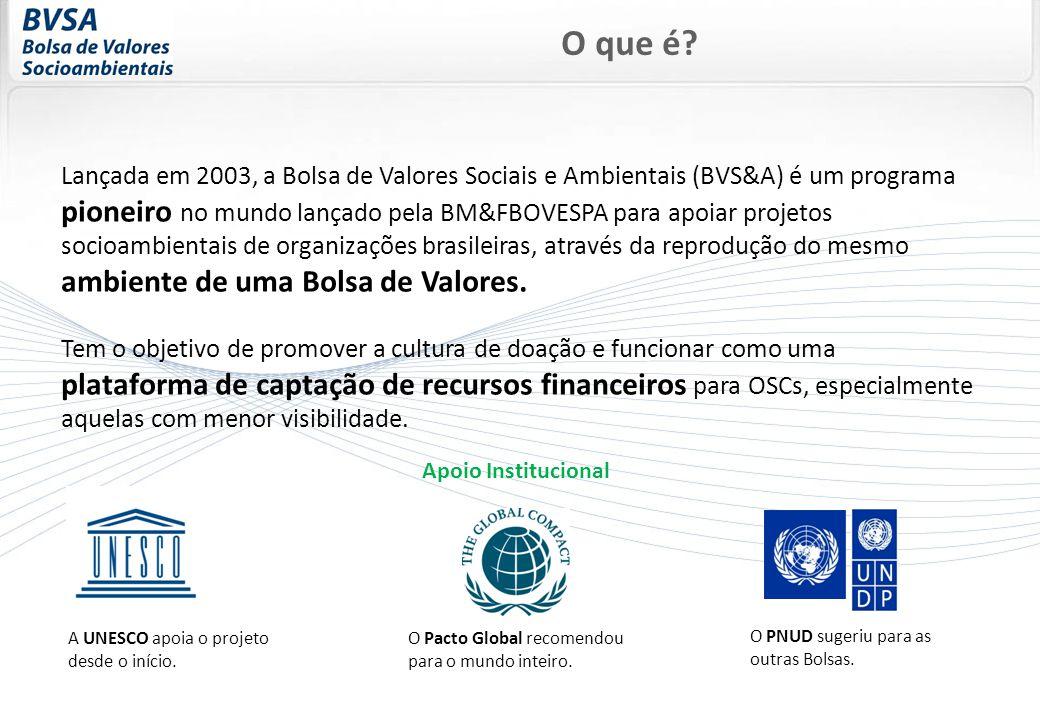 Lançada em 2003, a Bolsa de Valores Sociais e Ambientais (BVS&A) é um programa pioneiro no mundo lançado pela BM&FBOVESPA para apoiar projetos socioambientais de organizações brasileiras, através da reprodução do mesmo ambiente de uma Bolsa de Valores.