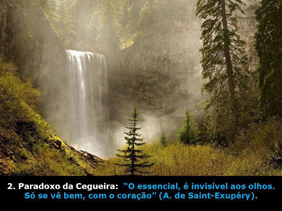 2.Paradoxo da Cegueira: O essencial, é invisível aos olhos.