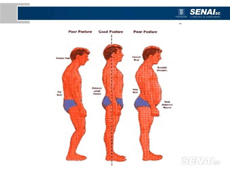 A mesa e a cadeira de trabalho, devem ser desenhadas, de modo que a superfície sobre a qual se trabalha, fique ao nível dos cotovelos, quando a pessoa está sentada, com o tronco direito e ombros descontraídos.