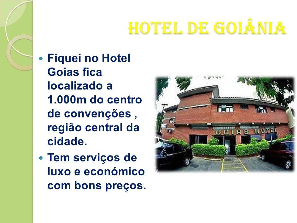Goiânia  Dia 30 de Dezembro viajei para Goiânia uma hora de viagem de avião.  Goiânia é capital do estado de Goiás.  Fica a 209 km de Brasília.  C
