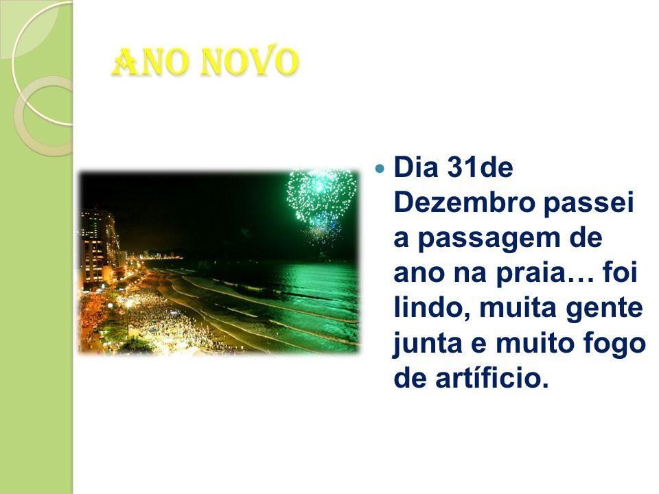 De Volta ao Rio de Janeiro  Dia 31 de Dezembro voltei para p Rio de Janeiro logo pela manhã.  Fiz umas compras e preparei-me para o reveillon.