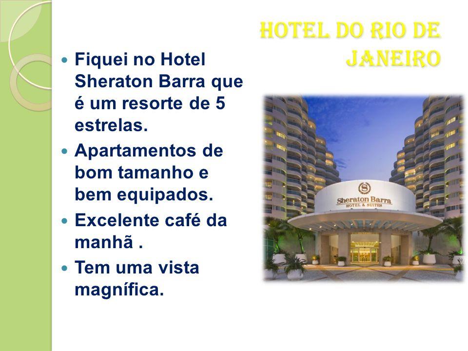 Rio de Janeiro  Dia 15 de Dezembro saí de Brasília e fui para o Rio de Janeiro logo pela manhã.  De avião foi uma hora e onze minutos.  Visto de ci