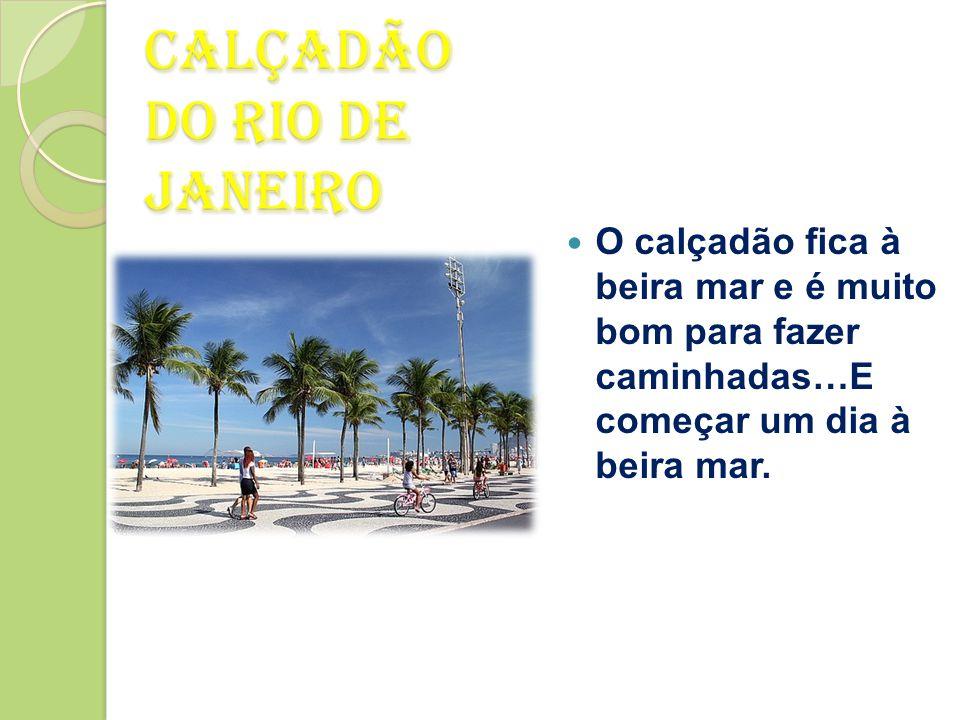 Hotel do Rio de Janeiro  Fiquei no Hotel Sheraton Barra que é um resorte de 5 estrelas.  Apartamentos de bom tamanho e bem equipados.  Excelente ca