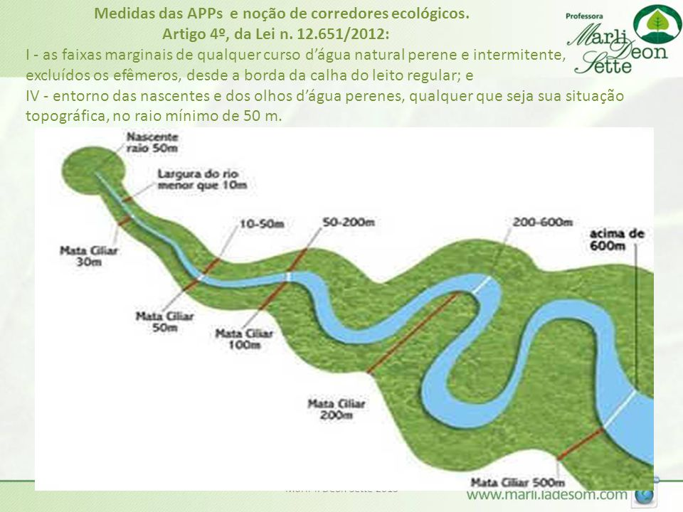 Marli T. Deon Sette 2013 Medidas das APPs e noção de corredores ecológicos. Artigo 4º, da Lei n. 12.651/2012: I - as faixas marginais de qualquer curs