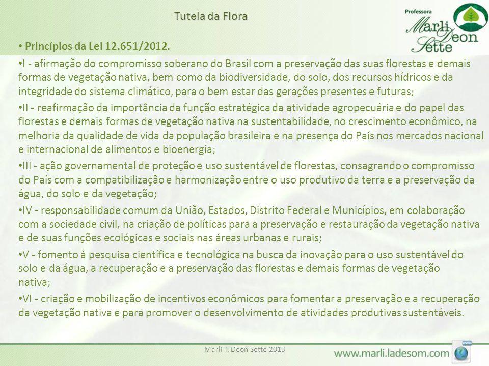 Marli T. Deon Sette 2013 • Princípios da Lei 12.651/2012. • I - afirmação do compromisso soberano do Brasil com a preservação das suas florestas e dem