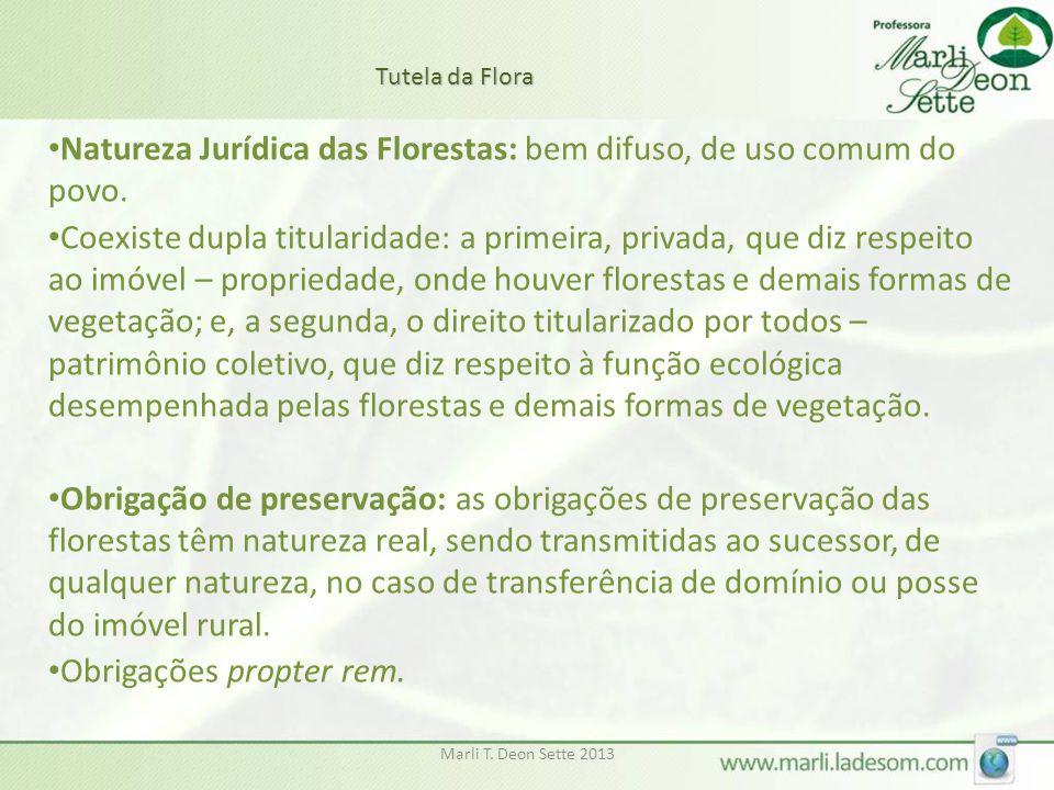 Marli T. Deon Sette 2013 • Natureza Jurídica das Florestas: bem difuso, de uso comum do povo. • Coexiste dupla titularidade: a primeira, privada, que