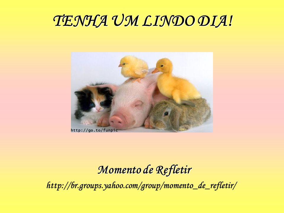 TENHA UM LINDO DIA! Momento de Refletir http://br.groups.yahoo.com/group/momento_de_refletir/