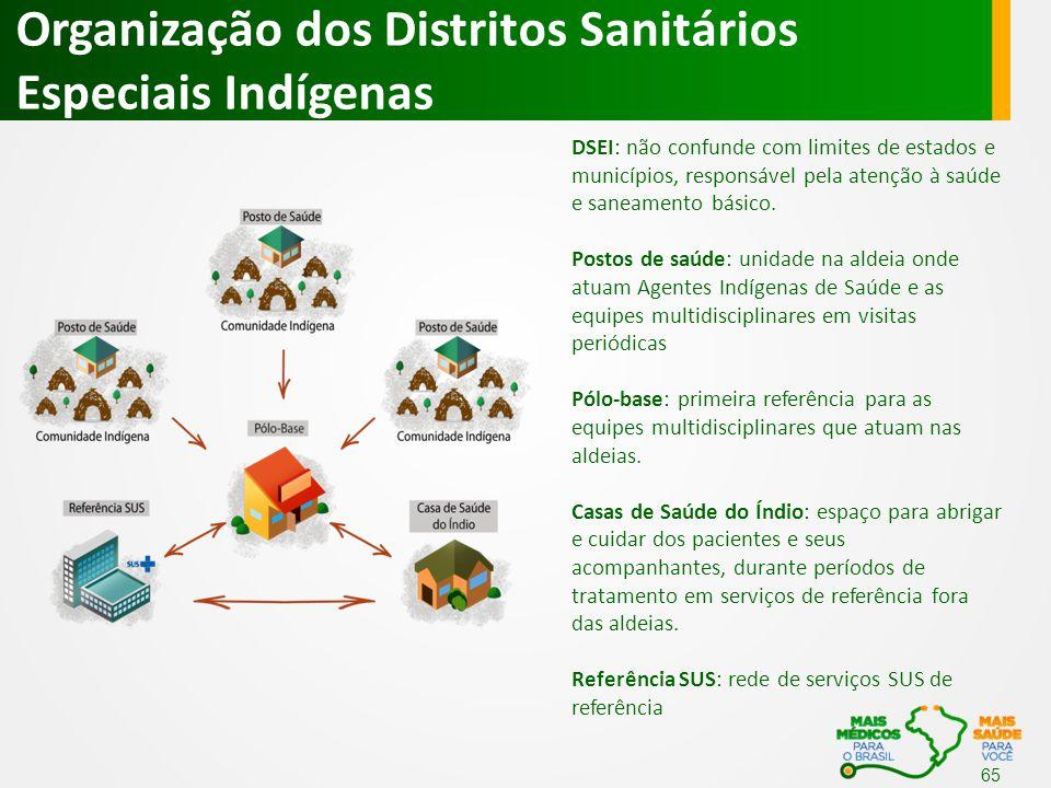 65 DSEI: não confunde com limites de estados e municípios, responsável pela atenção à saúde e saneamento básico.
