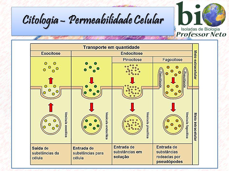 Citologia – Permeabilidade Celular