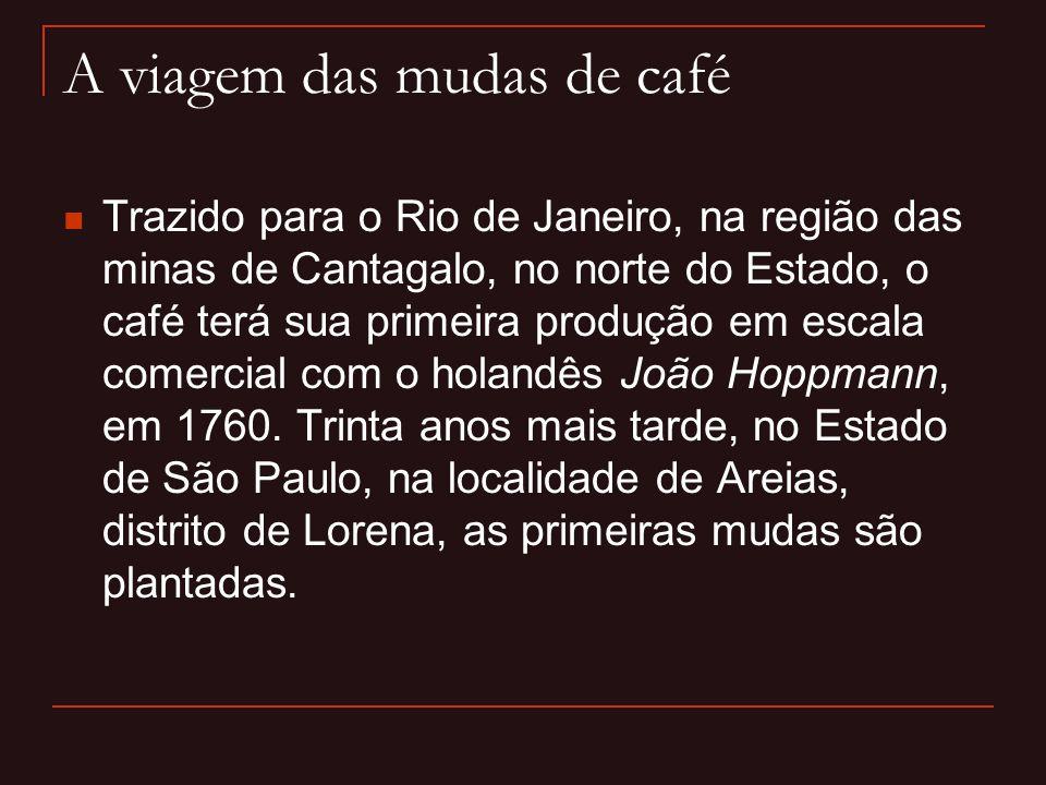 A viagem das mudas de café  Trazido para o Rio de Janeiro, na região das minas de Cantagalo, no norte do Estado, o café terá sua primeira produção em