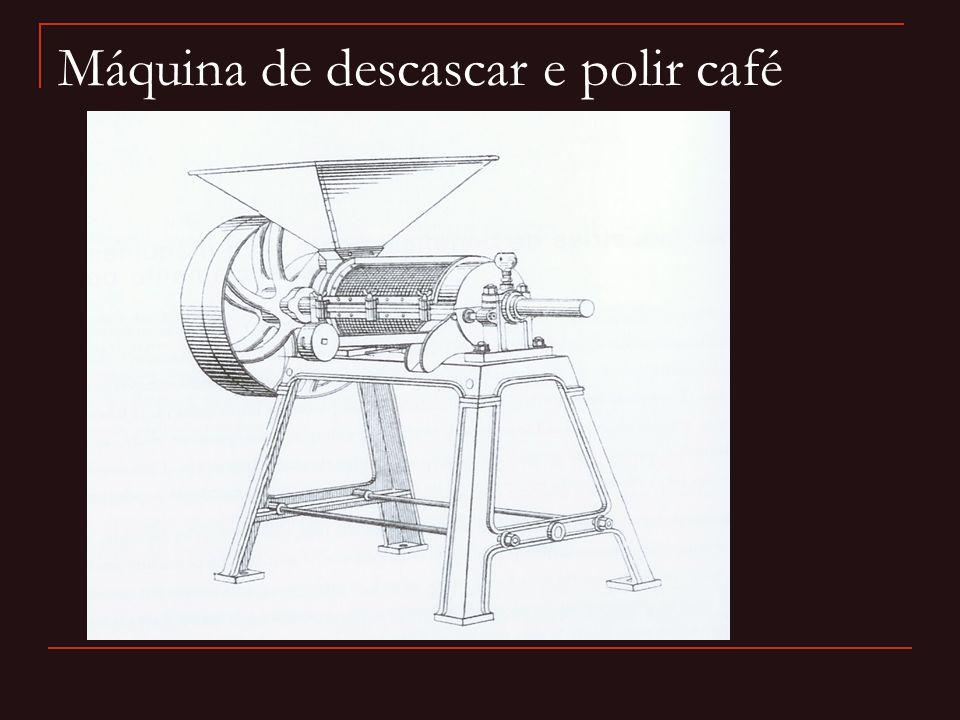 Máquina de descascar e polir café