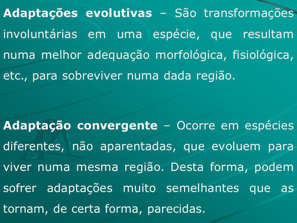 Adaptações evolutivas – São transformações involuntárias em uma espécie, que resultam numa melhor adequação morfológica, fisiológica, etc., para sobre
