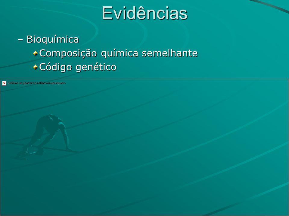 Evidências –Bioquímica Composição química semelhante Código genético
