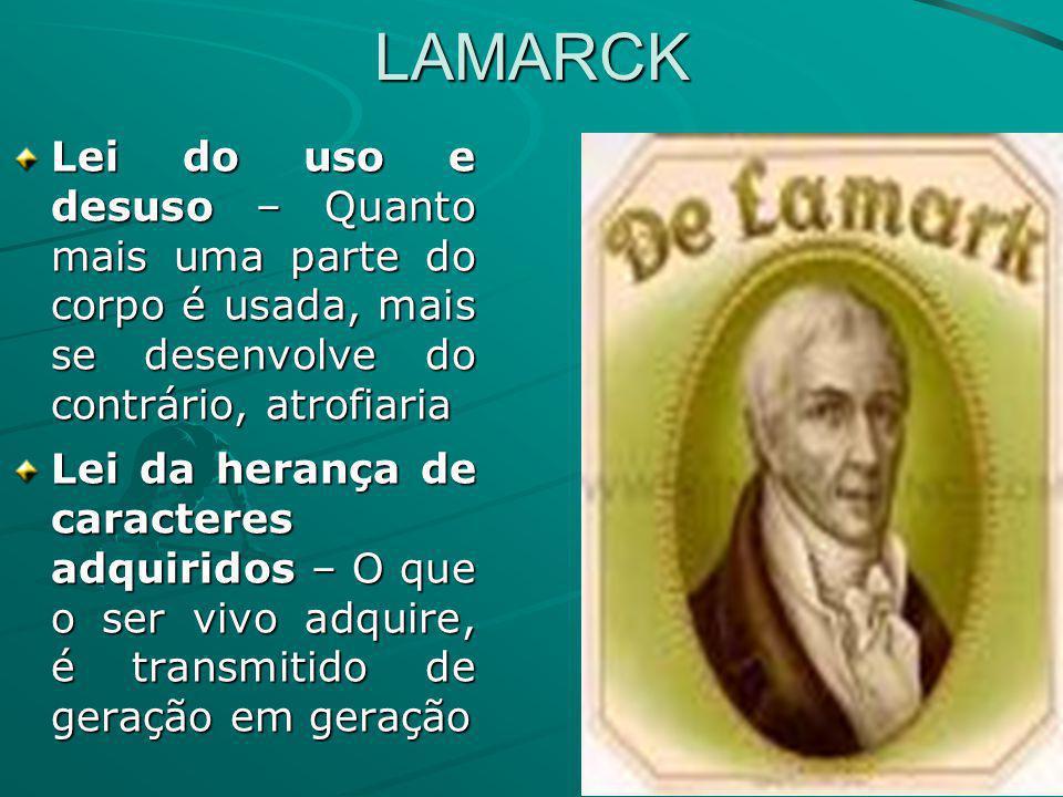 LAMARCK Lei do uso e desuso – Quanto mais uma parte do corpo é usada, mais se desenvolve do contrário, atrofiaria Lei da herança de caracteres adquiri