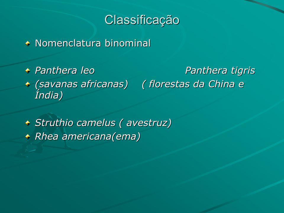 Classificação Nomenclatura binominal Panthera leo Panthera tigris (savanas africanas) ( florestas da China e Índia) Struthio camelus ( avestruz) Rhea