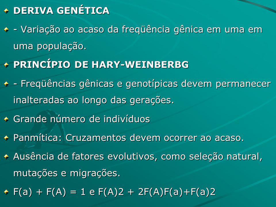 DERIVA GENÉTICA - Variação ao acaso da freqüência gênica em uma em uma população. PRINCÍPIO DE HARY-WEINBERBG - Freqüências gênicas e genotípicas deve