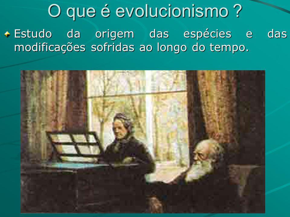 O que é evolucionismo ? Estudo da origem das espécies e das modificações sofridas ao longo do tempo.
