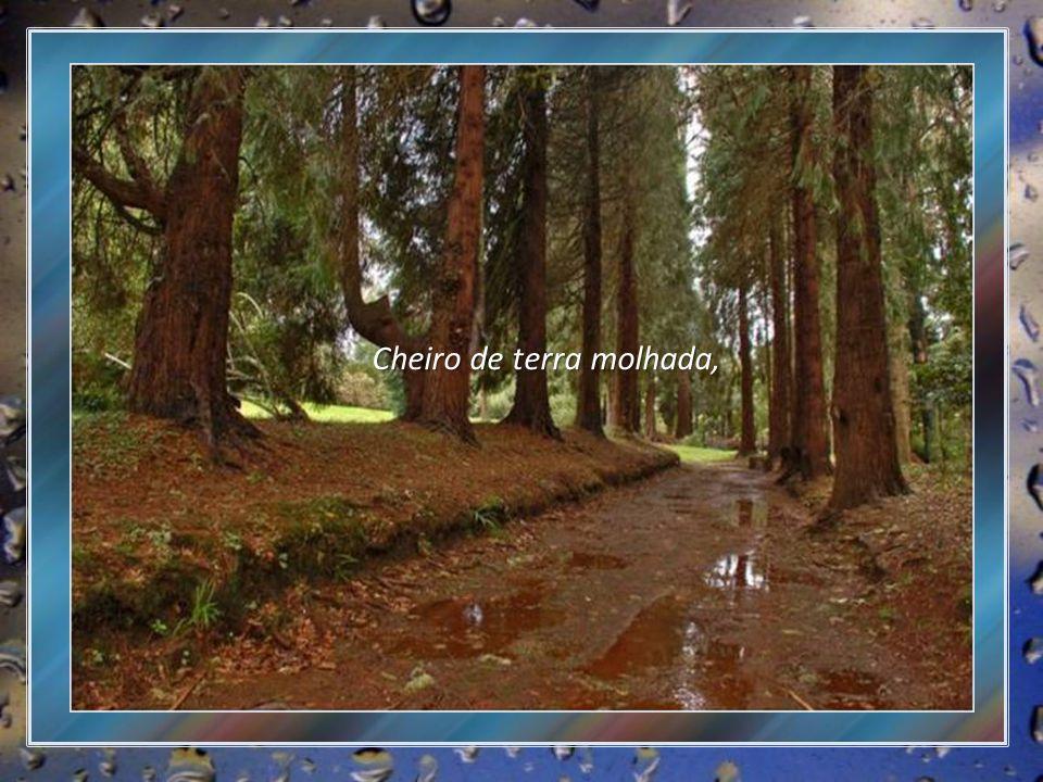 Poema de Marici Accioly Música: Grandpa - Ernesto Cortazar Imagens da internet e fotos de arquivo pessoal Formatação: Vera Lúcia de Siqueira verinhaescorpios@gmail.com