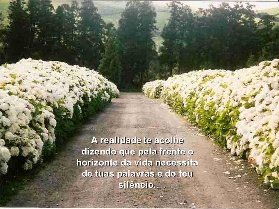 A realidade te acolhe dizendo que pela frente o horizonte da vida necessita de tuas palavras e do teu silêncio.