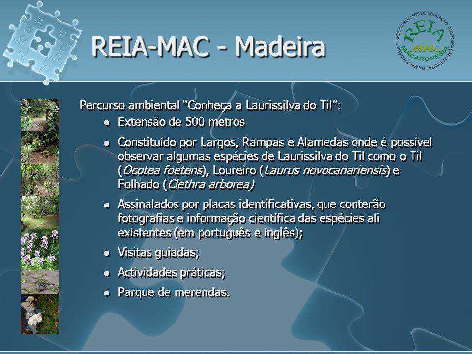 """REIA-MAC - Madeira Percurso ambiental """"Conheça a Laurissilva do Til"""":  Extensão de 500 metros  Constituído por Largos, Rampas e Alamedas onde é poss"""