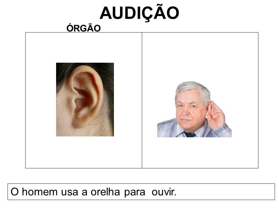 2º ANO NOMES:Guilherme Moraes e Lucas