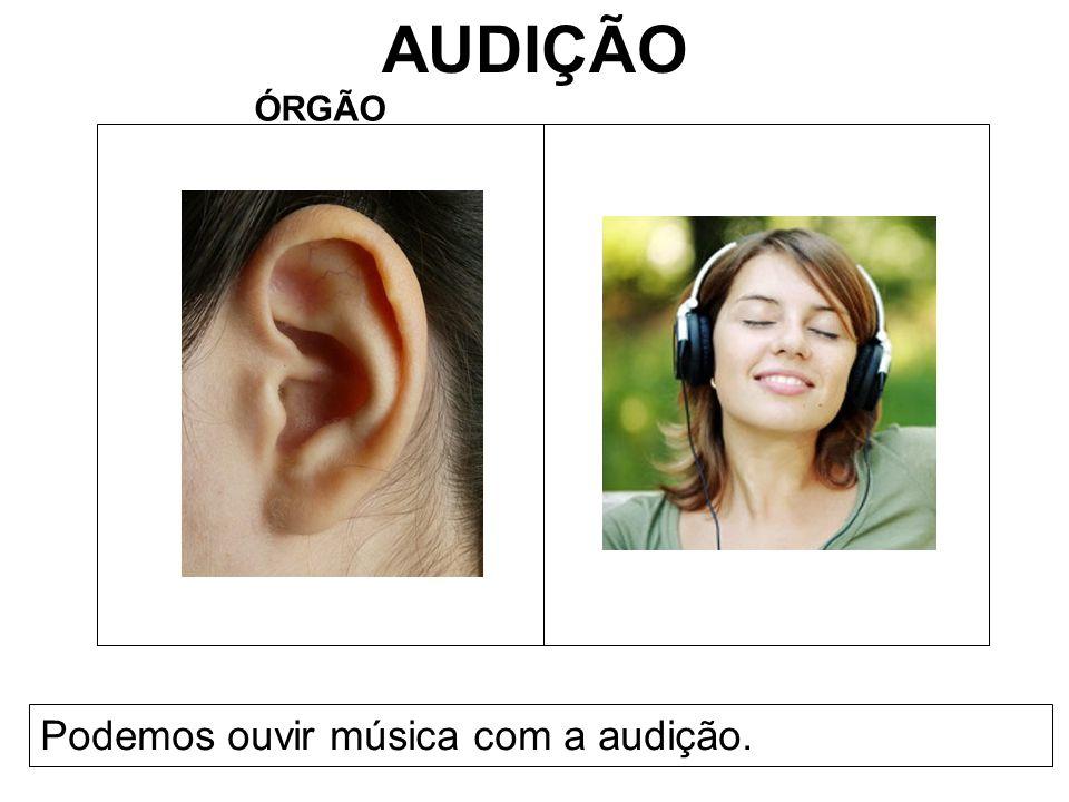 AUDIÇÃO ÓRGÃO Podemos ouvir música com a audição.