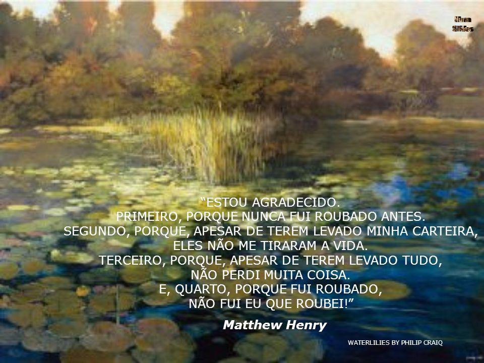 WATERLILIES BY PHILIP CRAIQ ESTOU AGRADECIDO.PRIMEIRO, PORQUE NUNCA FUI ROUBADO ANTES.