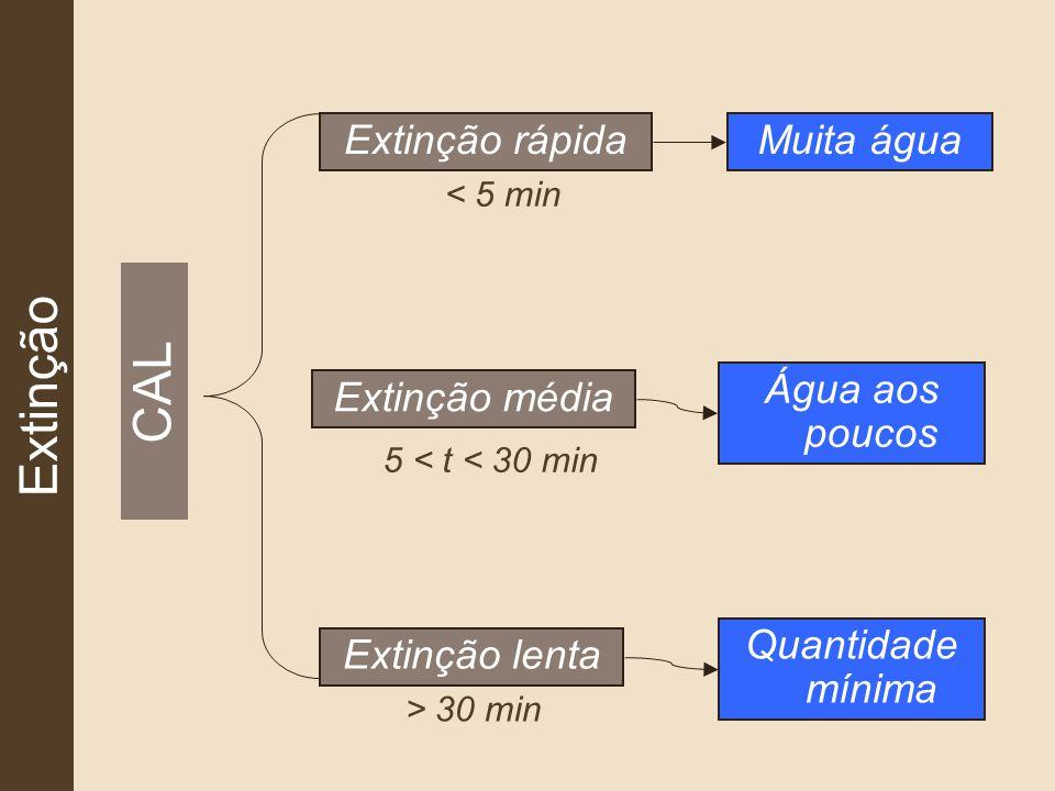Extinção CAL Extinção rápida Extinção média Extinção lenta < 5 min 5 < t < 30 min > 30 min Muita água Água aos poucos Quantidade mínima