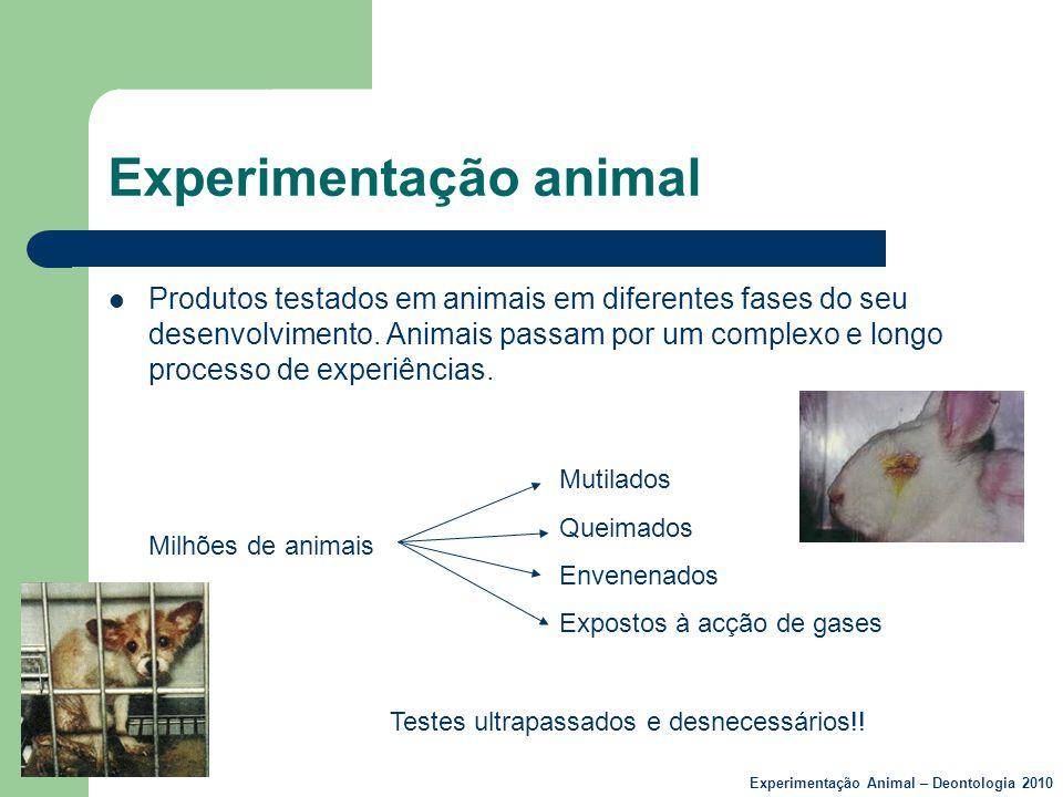 Experimentação animal  Produtos testados em animais em diferentes fases do seu desenvolvimento. Animais passam por um complexo e longo processo de ex