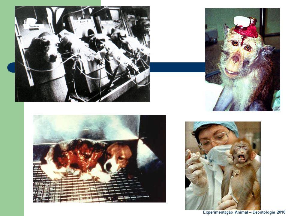 Benefícios para os animais  Vacinas para parvovirose canina, leucemia felina, raiva, etc.