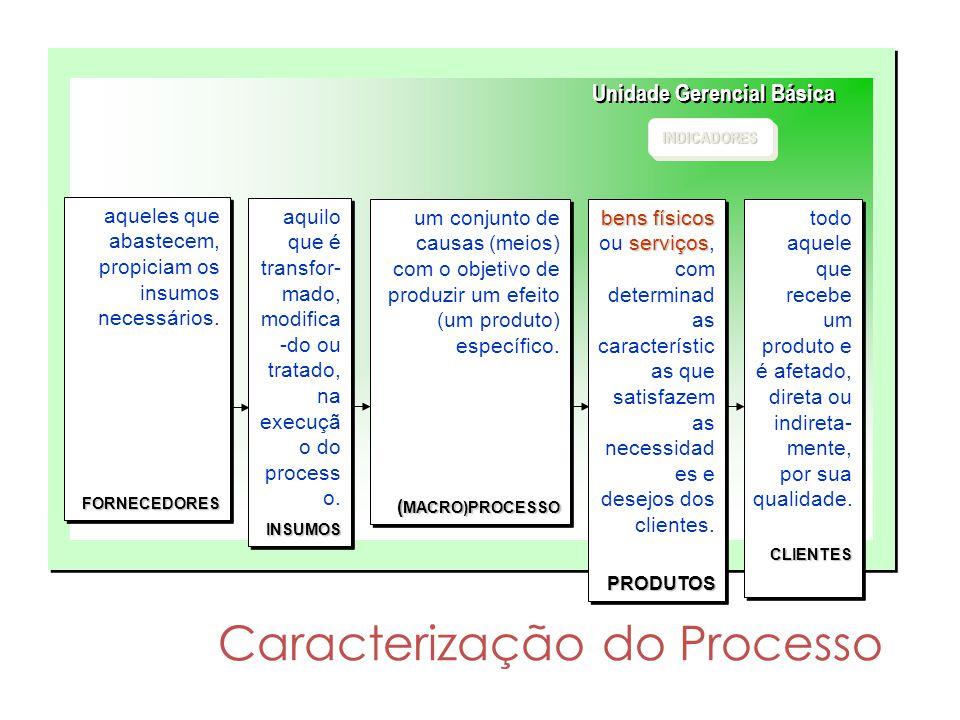 Caracterização do Processo Unidade Gerencial Básica INDICADORESINDICADORES um conjunto de causas (meios) com o objetivo de produzir um efeito (um prod