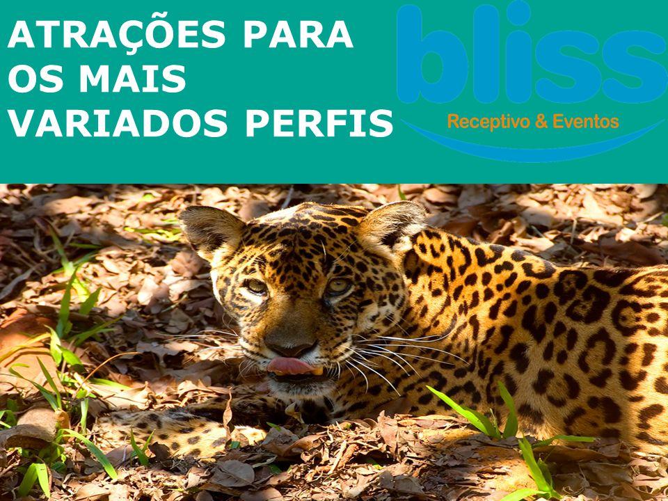 Parque Nacional do Iguaçu - Brasil • Patrimônio Natural da Humanidade desde 1986 – UNESCO • 185 mil hectares, de Mata Atlântica • Maior reserva de floresta pluvial subtropical do mundo • Diversidade de Fauna e Flora (257 espécies de borboletas, 18 de peixes, 12 de anfíbios, 41 espécies de serpentes, 8 de lagartos, 340 de aves e 45 de mamíferos)
