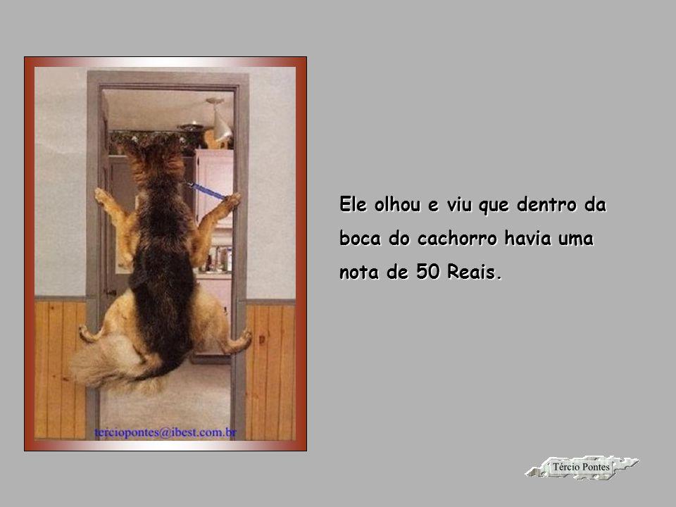Autor do texto: desconhecido Imagem da internet Música: Magali Apresentação: Tércio Pontes Contato: terciopontes@gmail.com