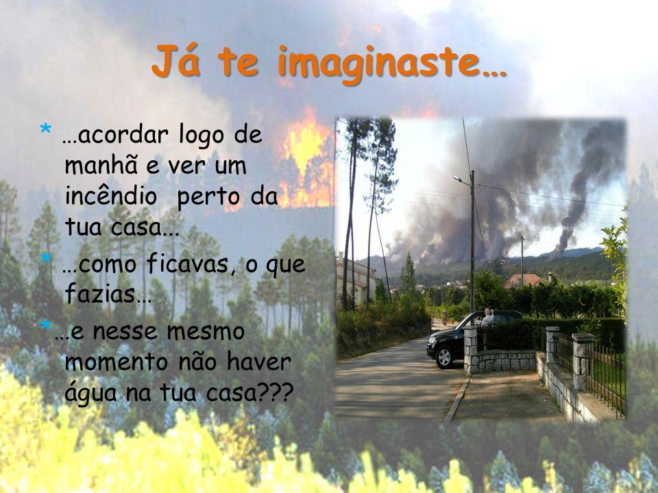 Já te imaginaste… * …acordar logo de manhã e ver um incêndio perto da tua casa... * …como ficavas, o que fazias… *…e nesse mesmo momento não haver águ