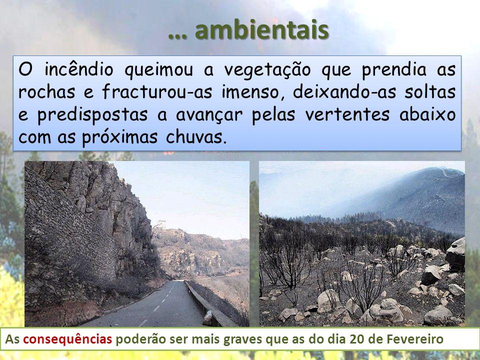 … ambientais O incêndio queimou a vegetação que prendia as rochas e fracturou-as imenso, deixando-as soltas e predispostas a avançar pelas vertentes a