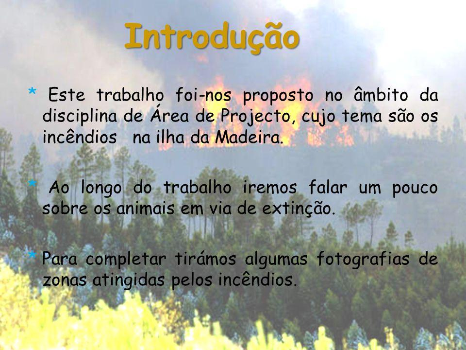 * Este trabalho foi-nos proposto no âmbito da disciplina de Área de Projecto, cujo tema são os incêndios na ilha da Madeira. * Ao longo do trabalho ir