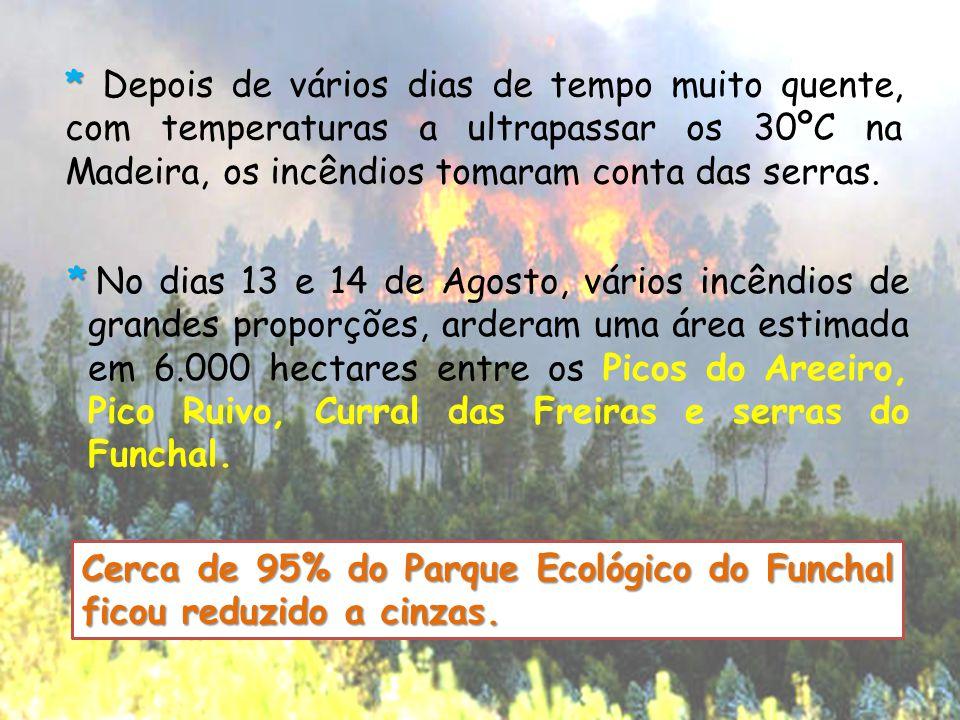 * * Depois de vários dias de tempo muito quente, com temperaturas a ultrapassar os 30ºC na Madeira, os incêndios tomaram conta das serras. * No dias 1